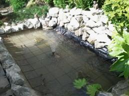 IMG 20130731 WA0025 258x193 Ponds